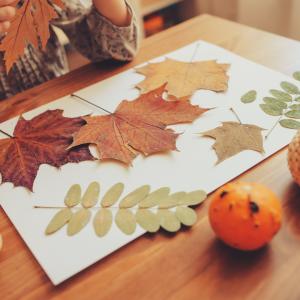 herfst knutselen wat te doen Lede vandaag